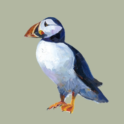 Puffin -Jack Sage by Ruth Bond